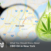 CBD oil in New York