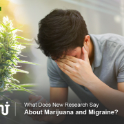 marijuana and migraines