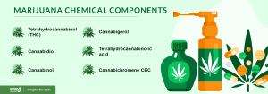 Marijuana chemical components