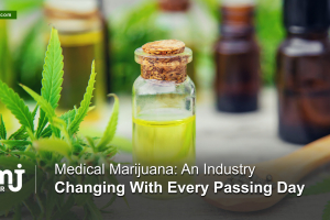 Dynamics of medical marijuana industry