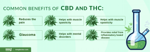 Benefits of CBD and THC
